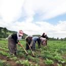17 Nisan Uluslararası Çiftçi Mücadele Günü